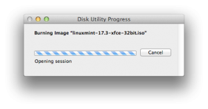 Disk utility working